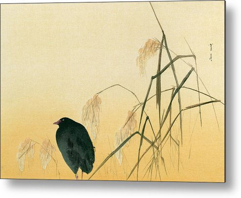 Japanese Metal Print featuring the painting Blackbird by Japanese School