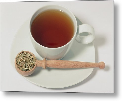 Chicory Metal Print featuring the photograph Chicory Tea by Th Foto-werbung/science Photo Library