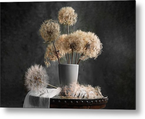 Dandelion Metal Print featuring the photograph Dandelion Seed Pod by Lydia Jacobs