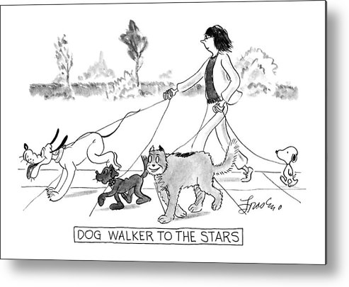 Pets Metal Print featuring the drawing Dog Walker To The Stars by Edward Frascino