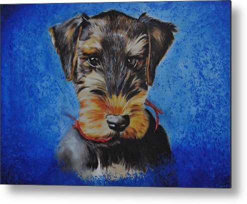 King Of Terriers Metal Print featuring the painting Mavrick by Ruben Barbosa