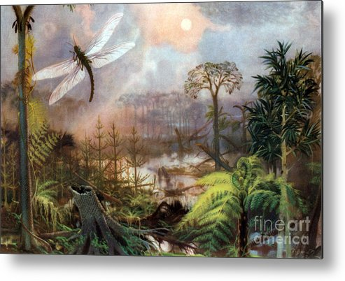 Flora Metal Print featuring the photograph Meganeura In Upper Carboniferous by Science Source