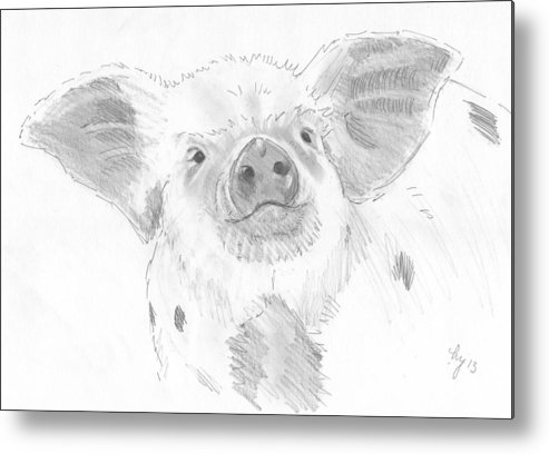 Pig Metal Print featuring the drawing Piglet  by Mike Jory