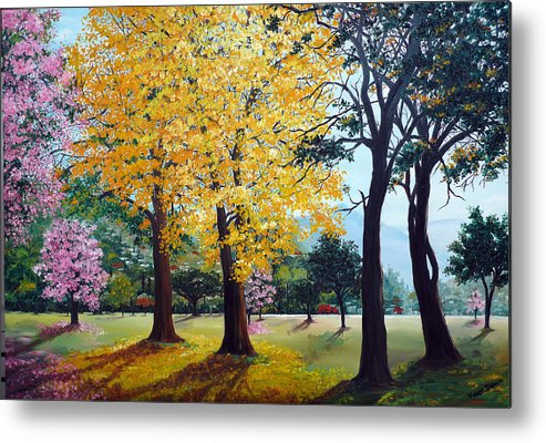 Tree Painting Landscape Painting Caribbean Painting Poui Tree Yellow Blossoms Trinidad Queens Park Savannah Port Of Spain Trinidad And Tobago Painting Savannah Tropical Painting Metal Print featuring the painting Poui Trees In The Savannah by Karin Dawn Kelshall- Best