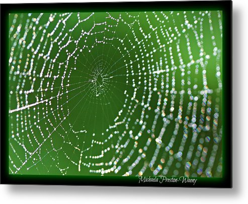 Water Metal Print featuring the photograph Spider Web by Michaela Preston