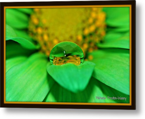 Water Metal Print featuring the photograph Vibrant by Michaela Preston