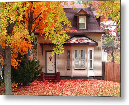 Foliage Metal Print featuring the photograph Weekend Work by Barbara McDevitt
