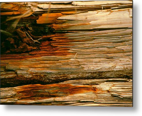 Wood Metal Print featuring the photograph Wooden Abstract by Michael Durst