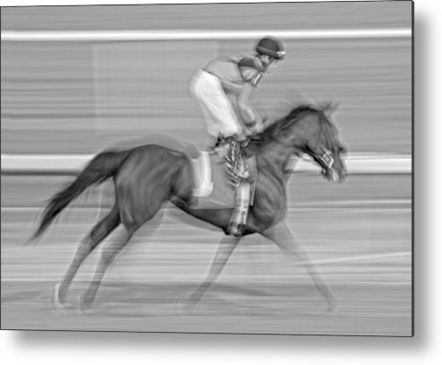 Horse Metal Print featuring the photograph Motion by Betsy Knapp