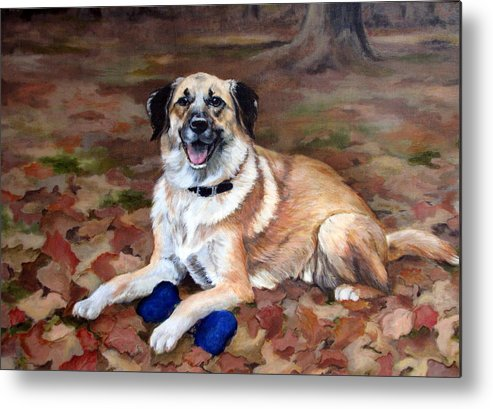 Dog Metal Print featuring the painting Dutch Shepherd by Sandra Chase