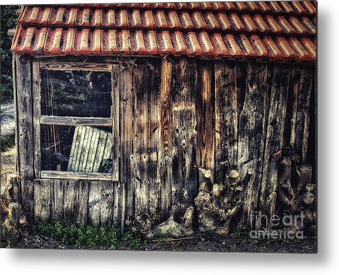 Photo Metal Print featuring the photograph Wayside by Jutta Maria Pusl
