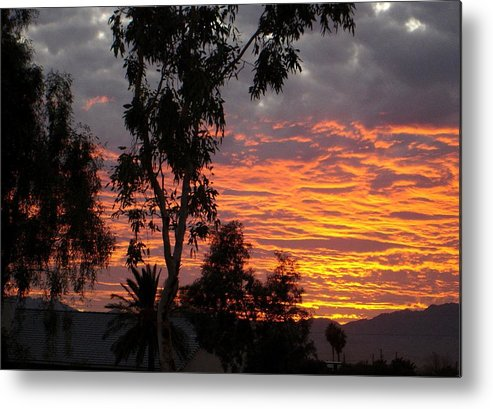 Arizona Metal Print featuring the photograph Arizona Sunset by Lessandra Grimley