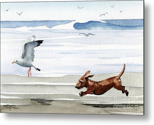 Dachshund Metal Print featuring the painting Dachshund At The Beach by David Rogers