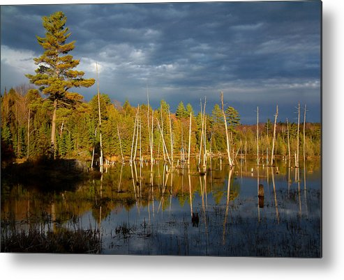 Wetlands Metal Print featuring the photograph A Fleeting Sunset Moment by Linda McRae