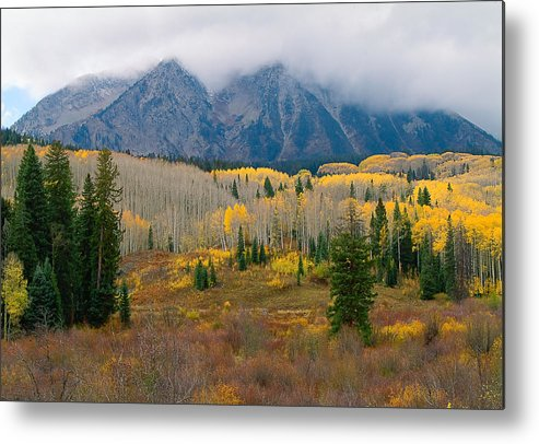 Colorado Fall Metal Print featuring the photograph Autumn Song by Tim Reaves
