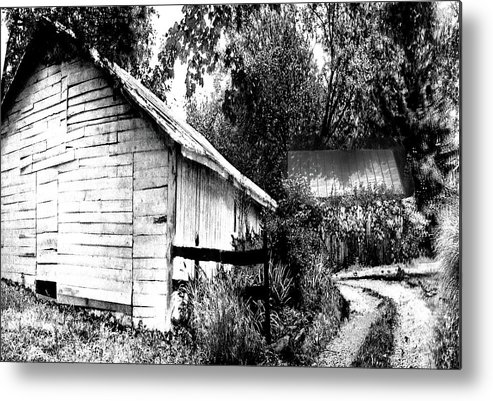 Metal Print featuring the photograph Barns In Black And White by Iris Posner