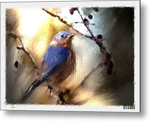 Bluebird Metal Print featuring the digital art Bluebird by Ken Barker