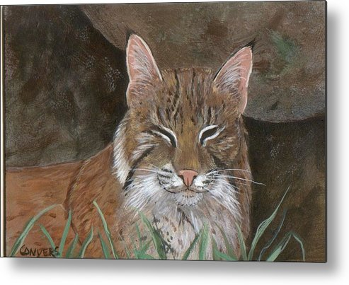 Cat Metal Print featuring the painting Bob Cat by Peggy Conyers