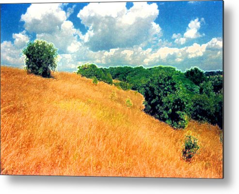Field Metal Print featuring the digital art Bushes On A Hill Ae by Lyle Crump