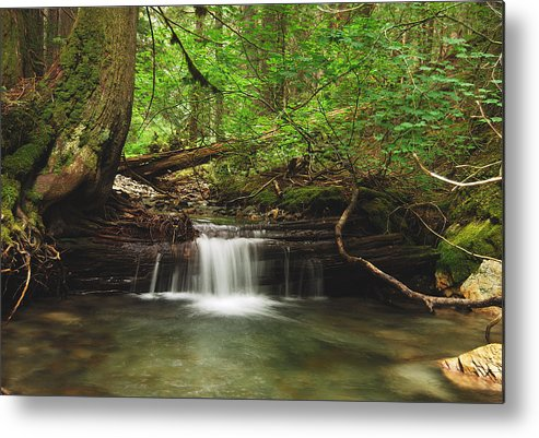 Landscape Metal Print featuring the photograph Cascade Happy Trail by Michael Peychich