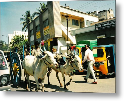 Oxen Metal Print featuring the photograph Changing Times by Robert Collier