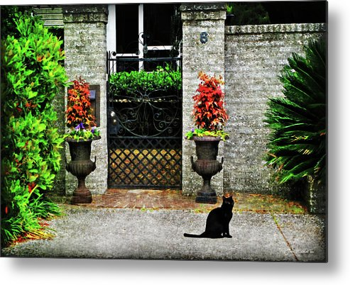Architectural Metal Print featuring the photograph Charleston Cat by Joan Minchak