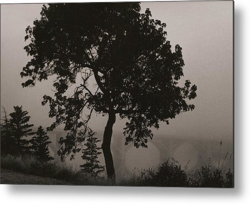 Elm Metal Print featuring the photograph Dark Elm By River by Arnold Isbister
