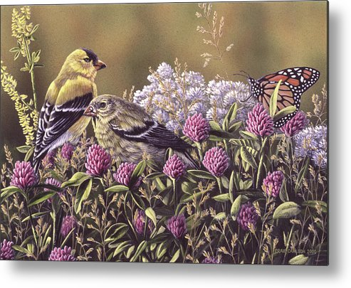 Goldfinch Metal Print featuring the painting Don't Bug Us - Goldfinches Monarch Butterfly by Craig Carlson