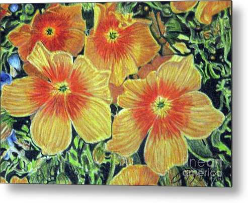 Fuqua - Artwork Metal Print featuring the drawing Flax by Beverly Fuqua
