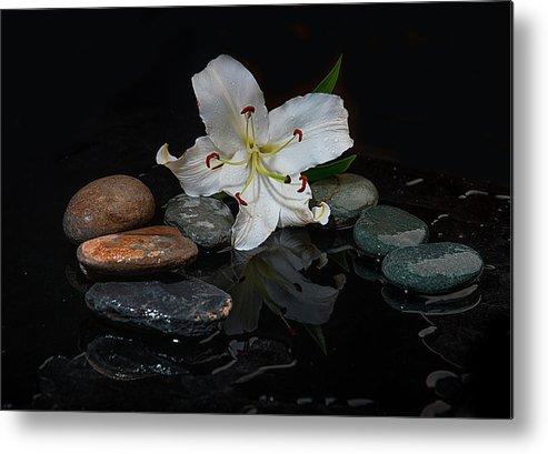 Flower Metal Print featuring the photograph Flower And Stone by Sergey Korzennikov