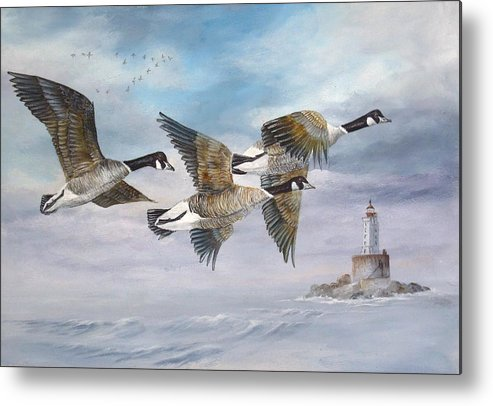 Aleutian Geese Metal Print featuring the painting Flying Home by Lynne Parker