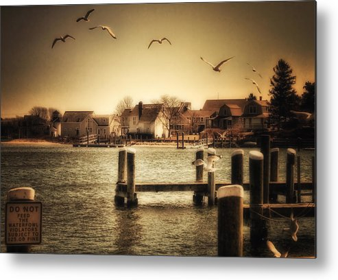 Cape Cod Metal Print featuring the photograph Harbor View by Gina Cormier