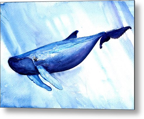 Humpback Whale Metal Print featuring the painting Humpback Whale by Sweeping Girl