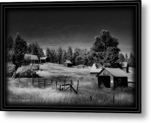 Old Wocicki Homestead Black N White Metal Print featuring the photograph If The Past Could Talk by Brenda D Busskohl