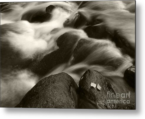 Waterfall Metal Print featuring the photograph Leaves And Waterfall by Timothy Johnson