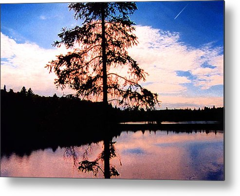 Landscape Metal Print featuring the photograph Pine Tree By Peck Lake 5 by Lyle Crump