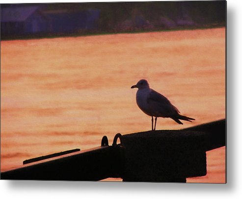 River Metal Print featuring the photograph Savannah River by JAMART Photography