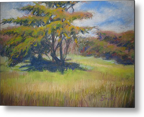 Tree Metal Print featuring the painting Shade by Shirley Braithwaite Hunt