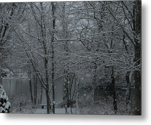 Winter Scene Metal Print featuring the photograph Snowfall On The Creek by Christopher Kirby