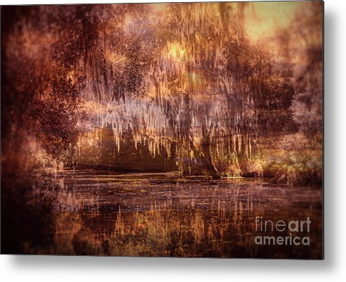 Louisiana Swamp Metal Print featuring the photograph Swamp 3 by Larry White