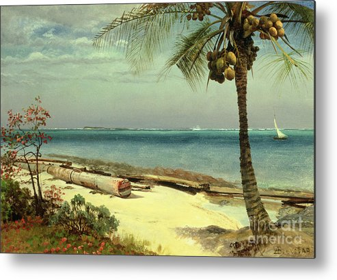 Shore; Exotic; Palm Tree; Coconut; Sand; Beach; Sailing Metal Print featuring the painting Tropical Coast by Albert Bierstadt