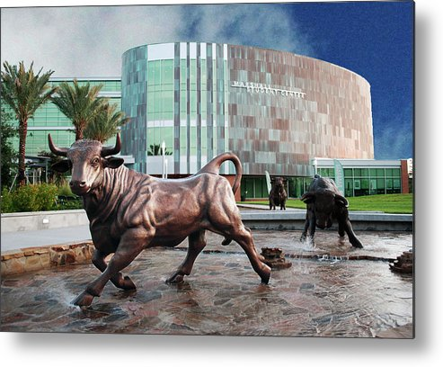 College Metal Print featuring the photograph Usf Tampa by Francesco Roncone