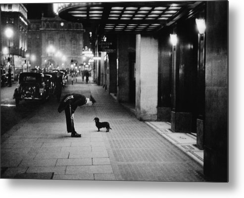 Piccadilly Circus Metal Print featuring the photograph Commissionaires Dog by Kurt Hutton
