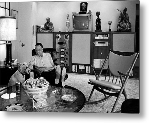 Pets Metal Print featuring the photograph Entertainer Frank Sinatra Relaxing W by John Dominis