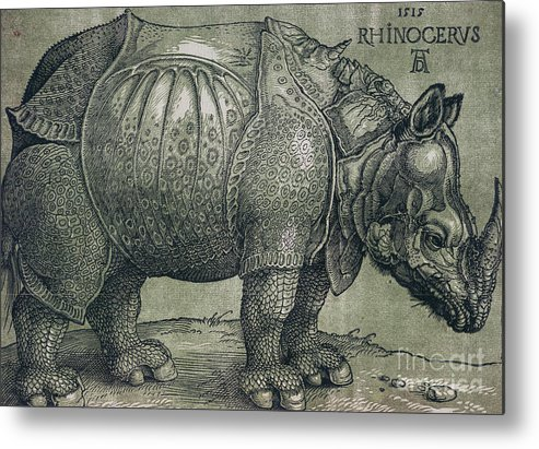 Woodprint; Rhino; Northern Renaissance; Wild; Animal; Mammal; Horn; Endangered Species; Print; Zoology Metal Print featuring the drawing The Rhinoceros by Albrecht Durer
