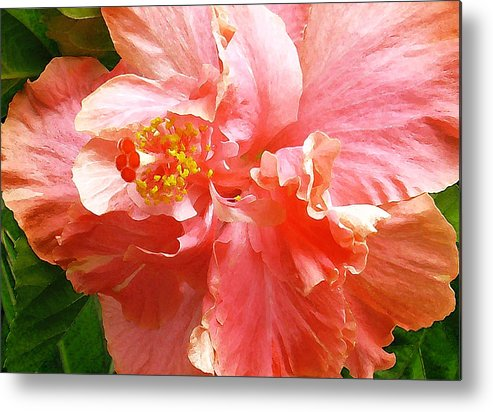 Hibiscus Metal Print featuring the digital art Bright Pink Hibiscus by James Temple