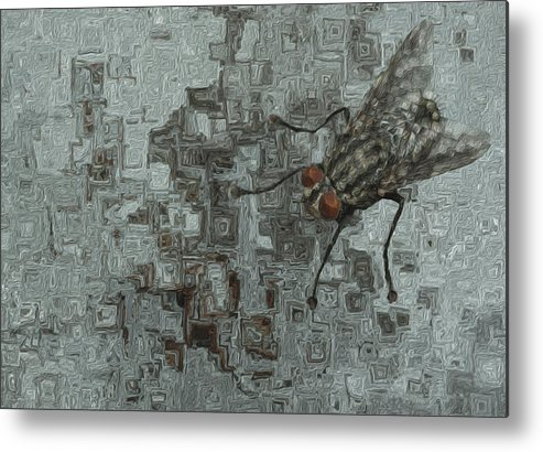 Abstract Metal Print featuring the painting Fly On The Wall by Jack Zulli