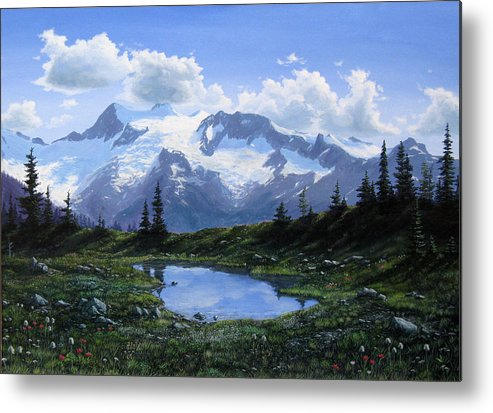 Pond Metal Print featuring the painting Jumbo Pass Pond by Ian Henderson
