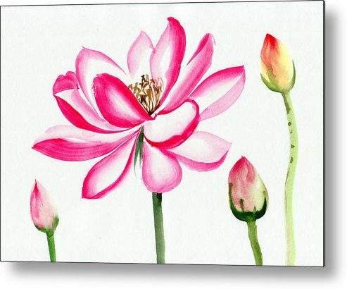 Lotus Flower Watercolor Painting Metal Print By Surovtseva