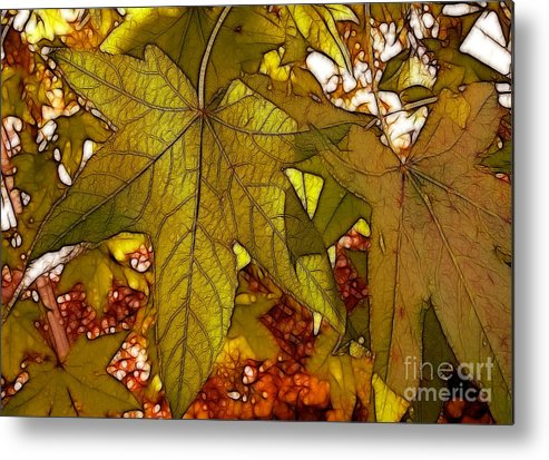 Leaves Metal Print featuring the photograph Touch Of Fall by Kathy Baccari